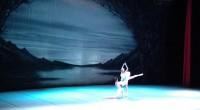 Les ballets de Saint Saint-Pétersbourg étaient à Istanbul pour une représentation du Lac des Cygnes. Retour sur l'histoire du ballet et extrait express !