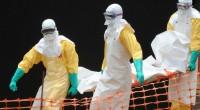 Depuis mars 2014 s'est engagé la plus grave épidémie d'Ebola jamais recensée depuis son apparition en 1976. Le nombre de victimes ne cesse de croitre en Guinée, au Libéria et […]