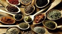 Pour sa troisième vidéo, Alt info vous emmène découvrir trois hauts lieux qui font le prestige de la gastronomie stambouliote. Pour en savoir plus: http://www.beyti.com/en/ https://www.hacibekir.com