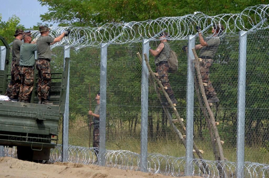 des-militaires-hongrois-achevent-un-mur-de-grillages-a-la-frontiere-avec-la-serbie-photo-afp