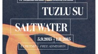 Tous les deux ans depuis 1987, la Fondation pour la Culture et les Arts (IKSV) d'Istanbul organise sa biennale d'art contemporain. Cette 14ème édition, intitulée Watersalt («eau salée») et placée […]