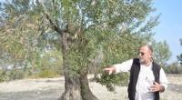 Nous sommes allés rencontrer la famille Kürşat sur leurs terres, à Ayvalık. Depuis maintenant trois générations, l'olivier est pour eux une passion: chaque période de l'année est l'occasion pour l'ensemble […]