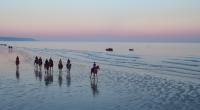 Expression de liberté, images de toute beauté. Cet été, les chevaux de Deauville se sont alliés aux millions de grains de sable de la grande plage de la cité balnéaire […]