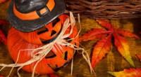 Si vous êtes en visite au Canada le 31 octobre, méfiez-vous! Regardez derrière vous, il est probable qu'un fantôme, un zombie ou un petit monstre ne soit pas loin. N'oubliez […]