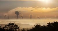 Dans une nouvelle étude publiée par le Fonds des Nations Unies pour l'enfance (UNICEF) lundi 31 octobre, l'organisation nous apprend qu'un enfant sur sept respire de l'air toxique. Une situation […]