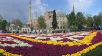 À l'occasion du 564e anniversaire de la conquête d'Istanbulpar les Turcs, une fresque de tulipesd'une superficie de 1453 m2 a été installée sur la place Sultanahmet. Aujourd'hui La Turquie s'est […]