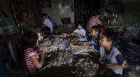 Le ministère du Travail et de la Sécurité sociale de la Turquie a déclaré que 2018 sera l'année «pour combattre le travail et l'exploitation des enfants».