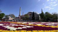 """À l'occasion du 564e anniversaire de la conquête de la ville par les Turcs, un """"tapis de tulipes"""" d'une superficie de 1453 m2 a été installé sur la place Sultanahmet […]"""