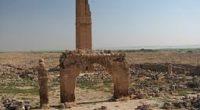 Les visiteurs de l'ancien site de Harran dans l'Anatolie du Sud-Est ont maintenant la possibilité de participer à des fouilles sur l'un des sites les plus anciens de l'histoire de […]
