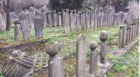 En se promenant sur la rive asiatique d'Istanbul, dans le quartier d'Üsküdar, à quelques mètres de la mosquée moderne Sakirin, on longe un immense cimetière musulman à flanc de colline […]