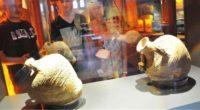 Le Musée des civilisations lyciennes, qui a ouvert l'année dernière dans la région de Demre (province d'Antalya), expose aujourd'hui pas moins de 1009 artefacts découverts lors de fouilles dans plusieurs […]