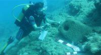 Une mission archéologique sous-marine exceptionnelle conduite dans le sud de la province de Mersin, en Turquie, a permis de découvrir dix-huit épaves de bateaux datant de l'époque classique, romaine et […]