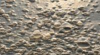 La rivière d'Ergene, située dans la partie européenne de la Turquie, fait aujourd'hui face aux effets dévastateurs du déversement de déchets industriels.