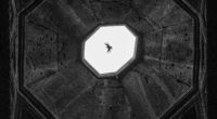 – 2 novembre au 1er décembre 2017 – La galerie Od'A-Ouvroir d'Art du Lycée Sainte Pulchérie présente l'exposition «Les voies du sacré» des photographes Timurtaş Onan et Nicolas Joyeux Vernissage […]