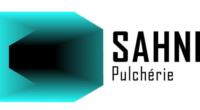 Sahne Pulchérie vous présente le programme de ses spectacles du mois de février.