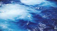 Dimanche 24 décembre, une résolution onusienne portant sur la haute mer et sa protection a été adoptée par l'Assemblée générale des Nations unies. Portée par le Mexique et la Nouvelle-Zélande […]