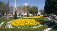 Le 13e Festival des tulipes s'est ouvert le 3 avril à Istanbul. La métropole s'est ainsi parée de ses plus belles couleurs, offrant un moment de répit aux stambouliotes qui […]