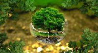 L'Institut de statistiques de Turquie (TurkStat) a annoncé que la Turquie a dépensé 10.6 milliards de dollars (31.8 milliards de TL) pour l'environnement en 2016.