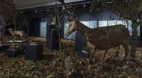 Jusqu'au 18 janvier 2019, le Lycée français Saint-Joseph est l'hôte de l'exposition «La Nuit» qui a attiré plus de trois millions de personnes lors de sa présentation au Musée National […]