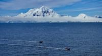 Une équipe de scientifiques turque a quitté le pays le 29 janvier afin de se rendre sur le continent le plus froid de la planète dans l'objectif d'y établir une […]