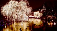 Si la magie de Noël reste entière en France, elle est d'autant plus animée au Danemark. Regorgeant de traditions, ce petit pays situé au nord de l'Europe nous invite et […]