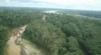 À la mi-août, on pouvait lire à la Une de nombreux journaux: «La déforestation amazonienne s'accélère dangereusement au Brésil». En effet, en juillet, elle aurait été presque quatre fois supérieure […]