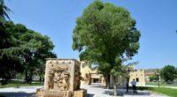 Après quatre années de travail pour un projet de 1,4 million de livres turques, la reconstruction de la capitale du royaume hittite, Hattusa, est terminée. Le site archéologique de ce […]