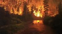 La ville de Fort Mcmurray est en proie aux flammes. Hier soir, c'est 100 000 habitants qui ont du être évacués en urgence. Ce gigantesque etviolent incendie adéjà décimédesquartiers entiers […]