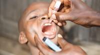 Maladie virale, la fièvre jaune fait actuellement des ravages considérables en Afrique centrale, avec toujours plus de contaminations. L'épidémie, qui a commencé en Angola fin 2015, s'étend maintenant à la […]