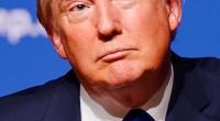 En chute dans les sondages, critiqué dans son propre camp, le candidat républicain tâche de se composer un programme et une image reposant sur autre chose que des sorties […]