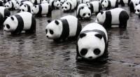 Le fonds mondial pour la nature (World Wide Fund – WWF) a rendu jeudi 27 octobre son rapport Planète vivante. Tous les deux ans, l'organisme établit un bilan de la […]