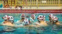 Le 21 juillet, la Turquie a remporté le 4e Championnat du monde de hockey subaquatique.