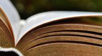 Les grands quotidiens évoquaient récemment les livres de la rentrée : le nombre de romans programmé s'élève à 581 romans et affiche une légère hausse par rapport à l'année dernière […]