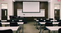 Le farsi et le coréen seront enseignés en option dans les lycées turcs dès 2019, selon un nouveau règlement publié le 23 janvier.