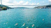Ce samedi 22 août, 1 765 nageurs professionnels et amateurs de 59 nationalités différentes ont participé à la 32e course intercontinentale de natation d'Istanbul. Reportée à cause de la Covid-19, […]